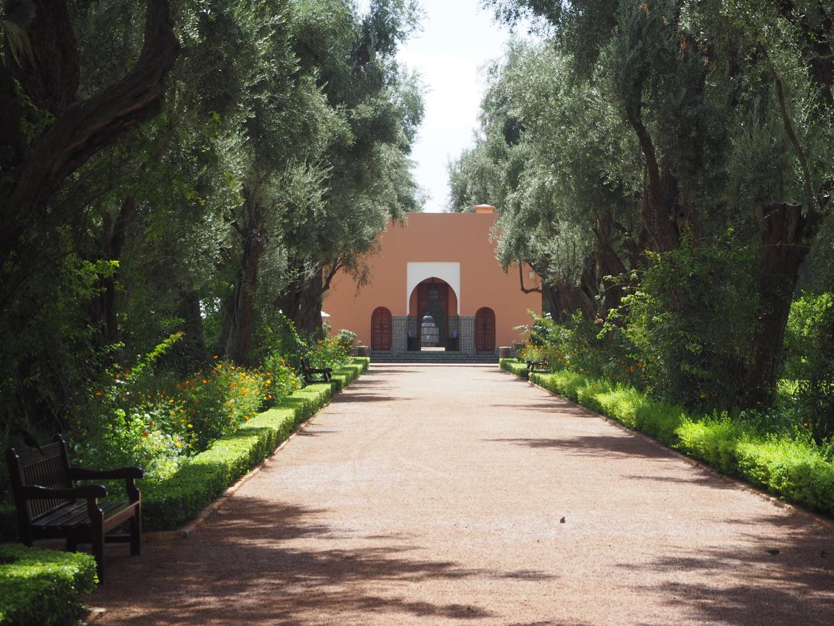 bare-minds-elina-neumann-marrakesch-marokko-la mamounia 9