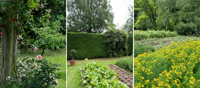 Beautyblog Dr. Hauschka Naturkosmetik Heilpflanzengarten