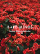 Bare Minds Beauty Adventskalender tuan-nguy-n-minh-570922-unsplash