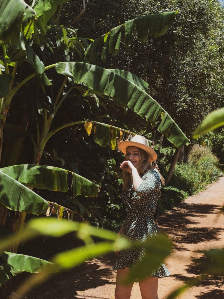 Beautyblog Südafrika Stellenbosch Weinfarm Babylonstoren