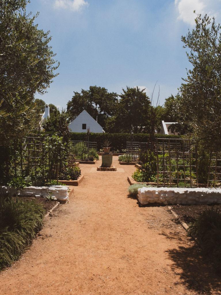 Beautyblog Südafrika Weinfarm Babylonstoren Garten