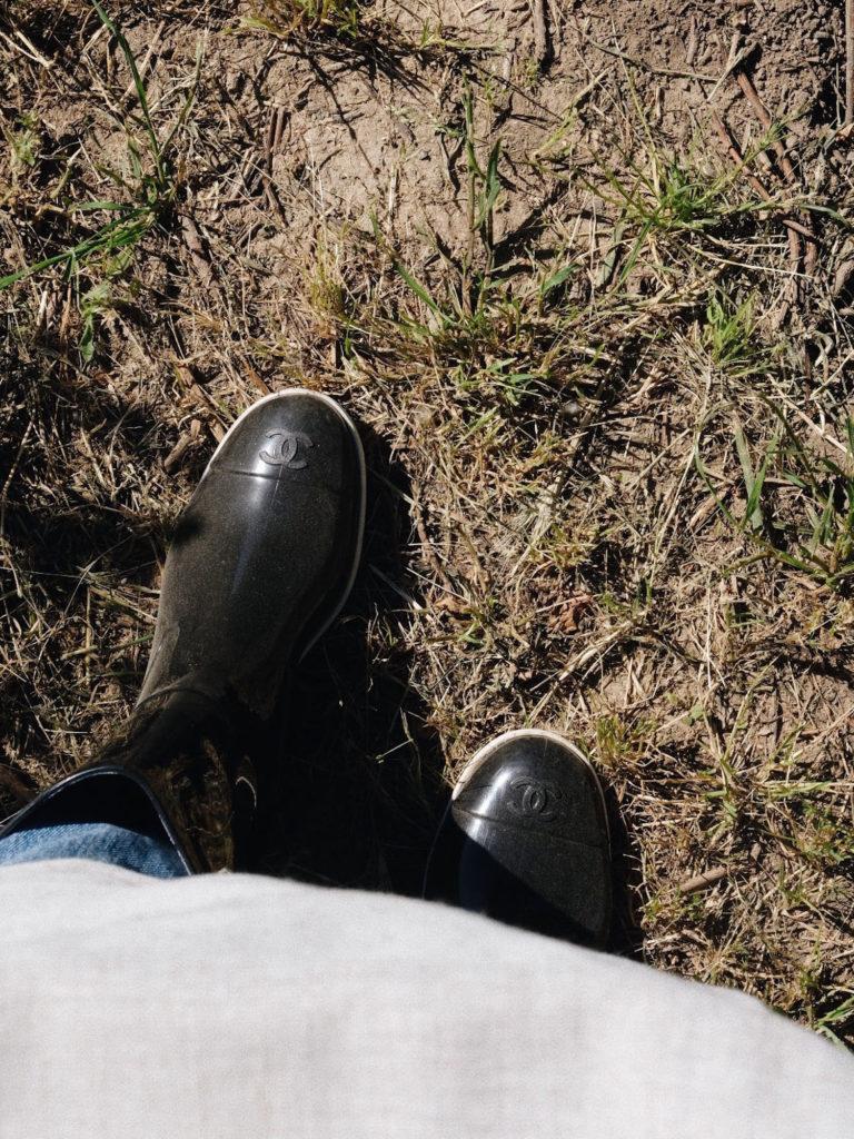 Beautyblog-In-Grasse-auf-den-Mairosenfeldern-von-Chanel-2
