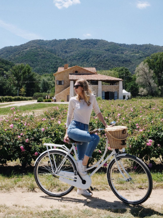 Beautyblog-Mairosenernte-Grasse-Chanel-N°-5